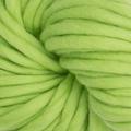 Color Chlorophyll