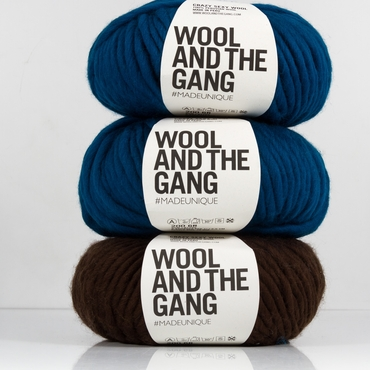 Chunky Yarn Wool and the Gang Yarn