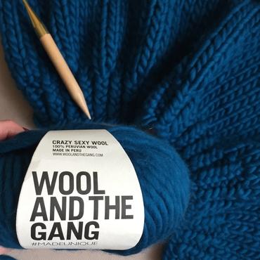 Chunky Yarn Crazy Sexy Wool Sherpa Blue